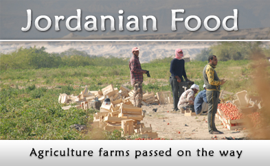 Jordanian Food, agriculture farms passed on the way